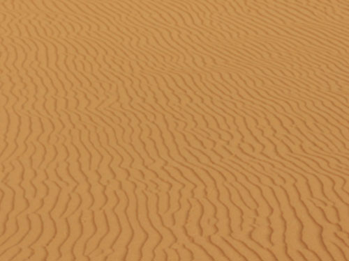 Der Wind formt den unberührten Sand... (Foto: spe)