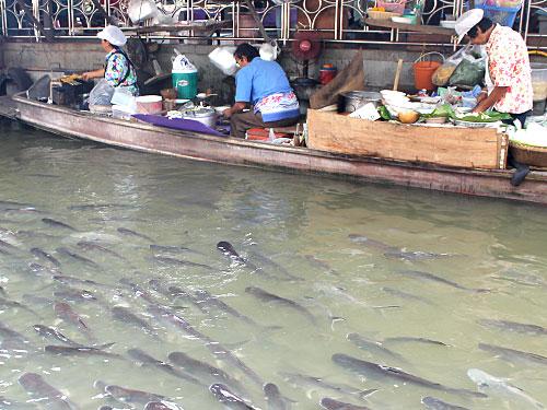 Ebenfalls am Wochenende kommen viele Einheimische zum Essen nach Taling Chan. Der kleine Floating Market an sich ist schon sehenswert und lässt sich prima mit einer Fahrt über die angrenzenden Kanäle verbinden. (Foto: spe)