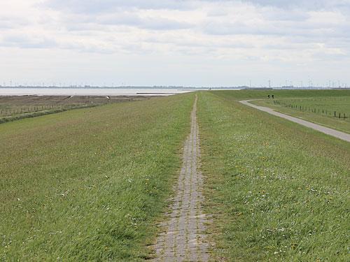 Wer nicht bis zur Meierei wandern möchte, biegt ab auf den Deich, der die Insel auf der Südseite schützt. (Foto: Sören Peters)