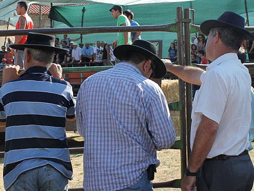 """Old School? Portugiesische """"Cowbows"""" als Zuschauer bei der Garraiada. (Foto: Sören Peters)"""