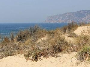 Küstenlandschaft in der Nähe von Guincho, auf dem Weg von Cascais nach Sintra. (Foto: spe)