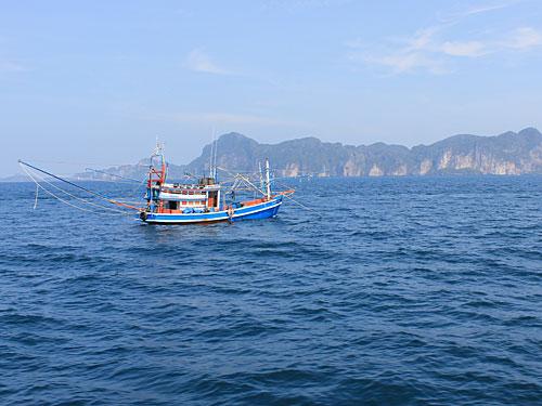 A propos Fische: Einige Artgenossen landen als frisches Seafood auf dem Teller. (Foto: Sören Peters)