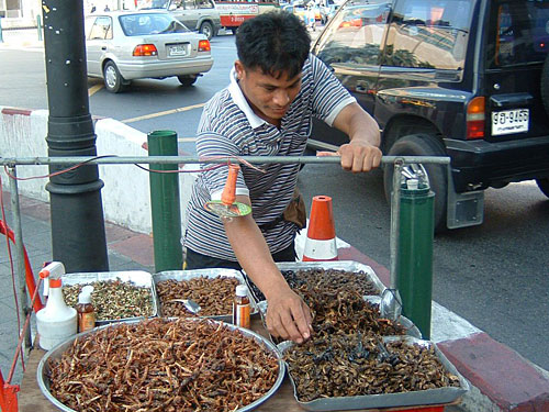 """Verkaufsstand für Heuschrecken, Mehlwürmer und Co. in Thailand. Wer sich traut, nimmt eine """"gemischte Tüte"""" zum Knabbern mit. (Foto: <a href=""""http://www.flickr.com/photos/rivard/63403963/"""">Rivard</a> via <a href=""""http://photopin.com"""">photopin</a> <a href=""""http://creativecommons.org/licenses/by-nd/2.0/"""">cc</a>)"""