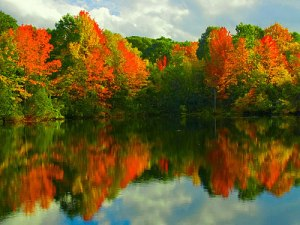 """Indian Summer in Maine. (Foto: <a href=""""http://www.flickr.com/photos/brentdanley/1663969921/"""">brentdanley</a> via <a href=""""http://photopin.com"""">photopin</a> <a href=""""http://creativecommons.org/licenses/by-nc-sa/2.0/"""">cc</a>)"""