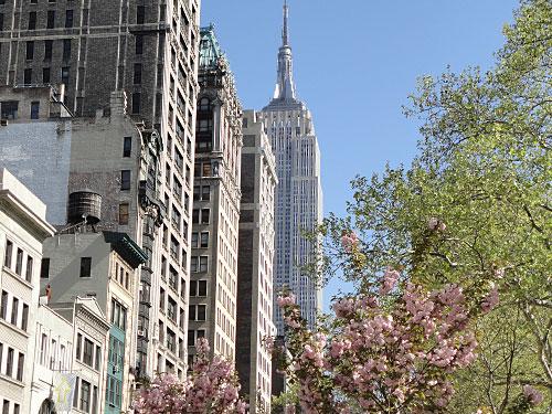 Frühlingserwachen in Manhattan. Im Hintergrund: Das Empire State Building. (Foto: Sören Peters)