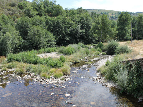 "Der ""Fluss"" in der Nähe des Dorfes. (Foto: Sören Peters)"