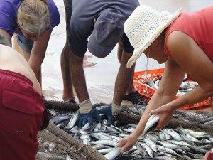 Fischer und Helfer an der Meia Praia. (Foto: Sören Peters)