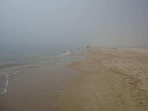 Letzter Urlaubstag im Nebel. (Foto: Sören Peters)