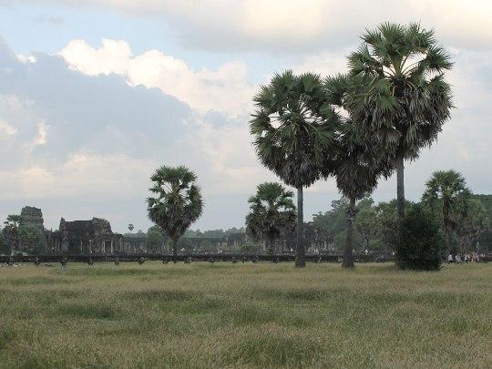 Doch erst außerhalb der Tempelmauern bekommt man einen Eindruck von der Größe des Areals. (Foto: Sören Peters)