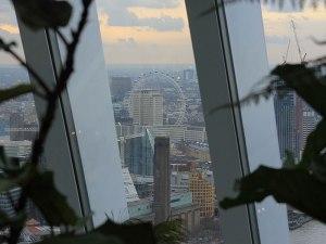 Blick durch das Grünzeug hindurch nach Westen auf das London Eye. (Foto: Sören Peters)