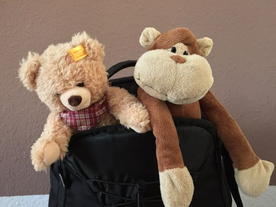 Teddy und Affe James mussten natürlich auch mit! (Foto: Sören Peters)